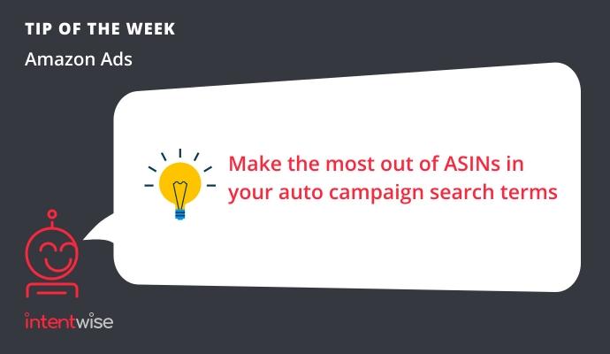 Auto campaign search terms